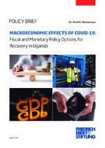 Macroeconomic effects of COVID-19